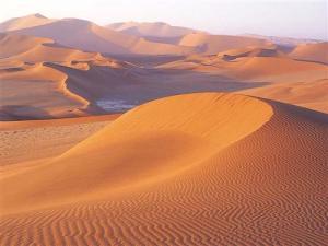 QUIZ_Le-desert-dans-la-litterature_1064